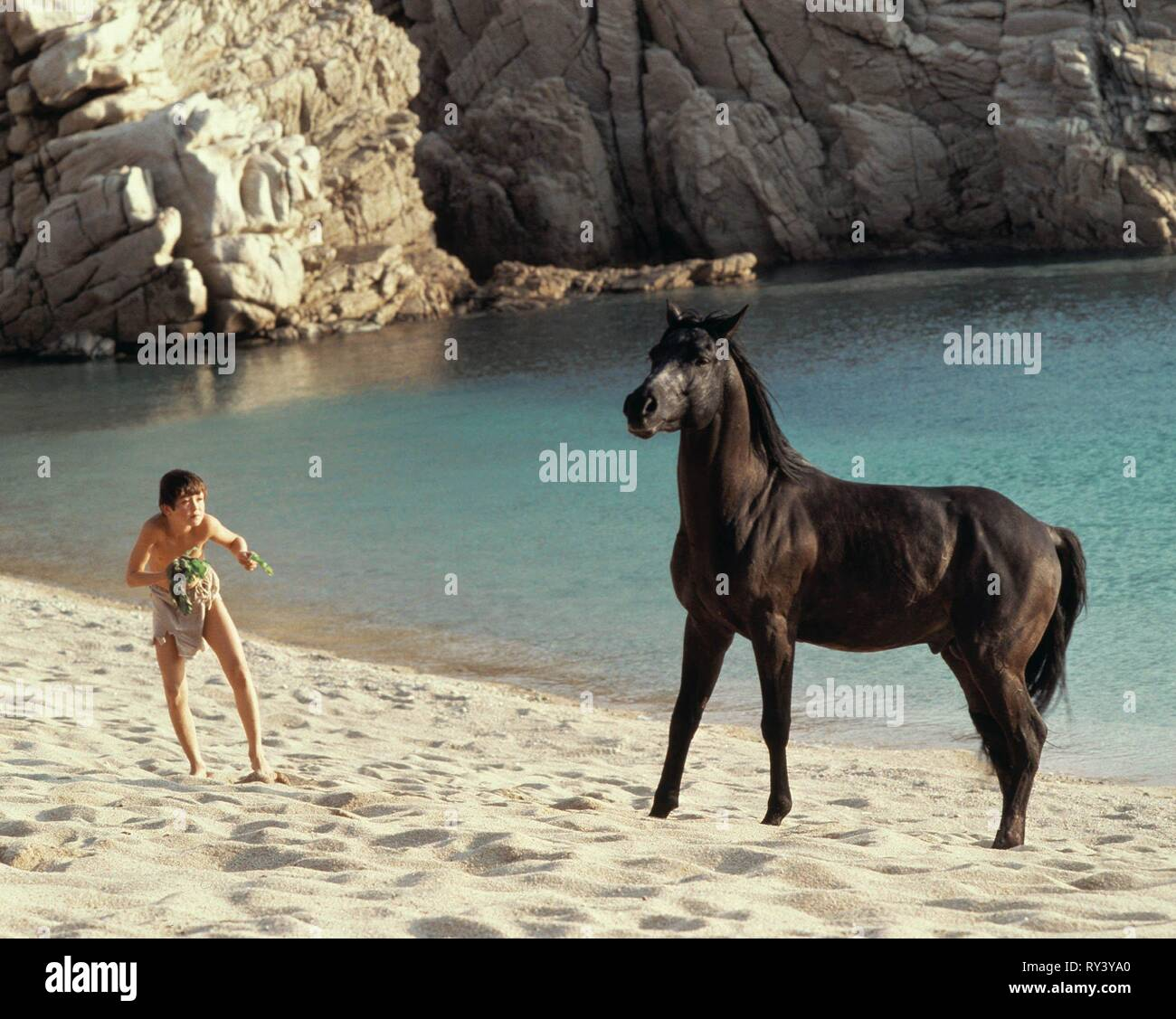 KELLY RENO, THE BLACK STALLION, 1979 - Stock Image