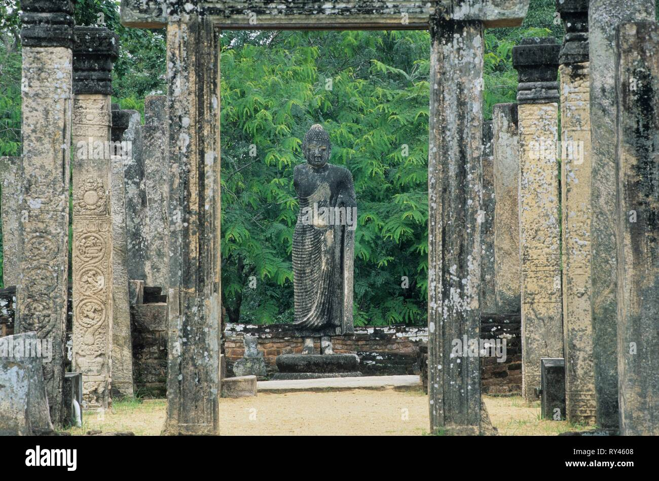 Atadage, Terrace of the Tooth relic, Polonnaruwa, Sri Lanka - Stock Image