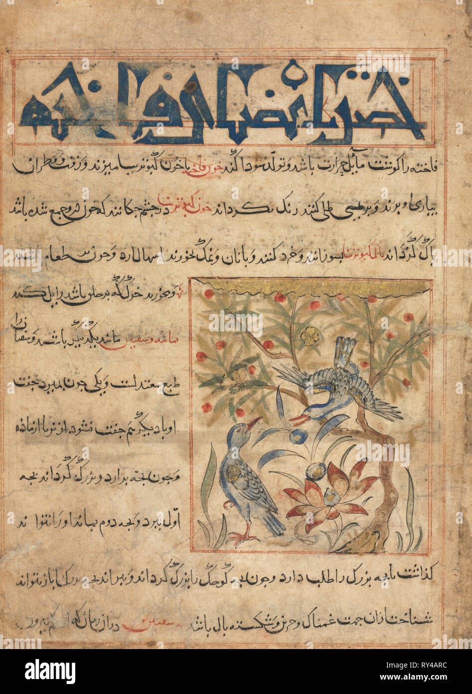 Qualities of Ringdoves (recto) from a Manafi' al-Hayawan (On the Usefulness of Animals) of Ibn Bakhtishu' (d. 1058), c. 1300. Iran, probably Maragah, Ilkhanid period (1256-1353). Opaque watercolor, ink, and gold on paper; image: 10.2 x 9 cm (4 x 3 9/16 in.); overall: 24.7 x 18.2 cm (9 3/4 x 7 3/16 in.); text area: 22.2 x 16.5 cm (8 3/4 x 6 1/2 in - Stock Image