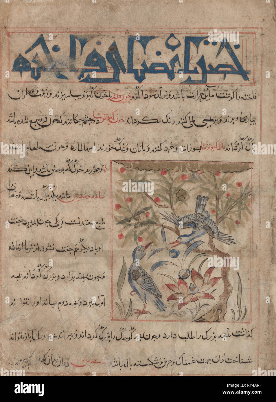 Qualities of Ringdoves (recto); On the Benefits of Quails (verso), from a Manafi' al-Hayawan (On the Usefulness of Animals) of Ibn Bakhtishu' (d. 1058), c. 1300. Iran, probably Maragah, Ilkhanid period (1256-1353). Opaque watercolor, ink, and gold on paper; image: 10.2 x 9 cm (4 x 3 9/16 in.); overall: 24.7 x 18.2 cm (9 3/4 x 7 3/16 in.); text area: 22.2 x 16.5 cm (8 3/4 x 6 1/2 in - Stock Image