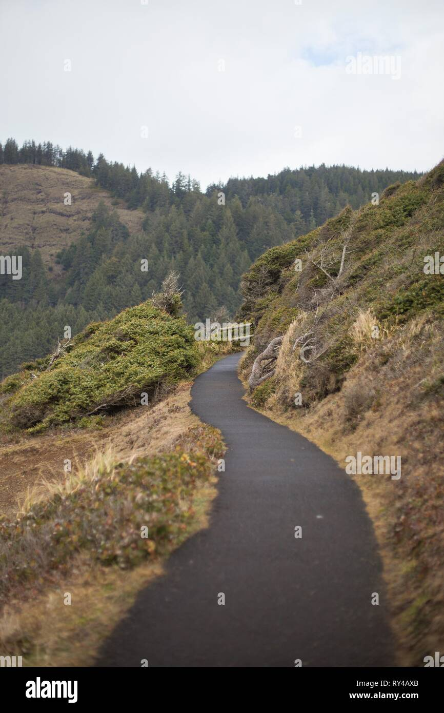 A trail at Cook's Chasm, near Yachats, Oregon, USA. - Stock Image
