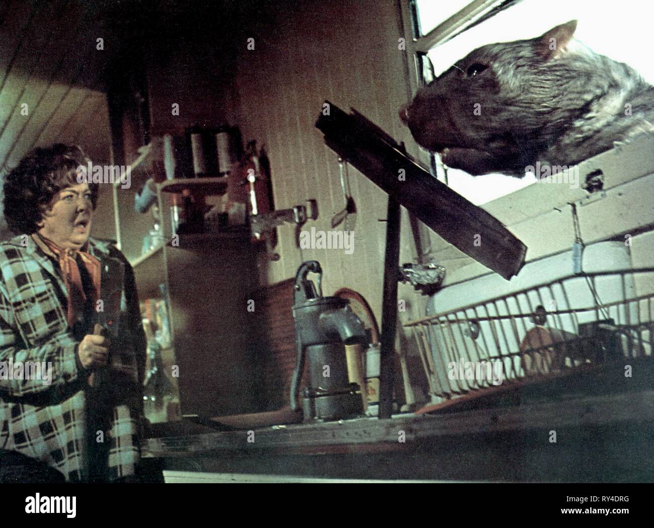 GIANT RAT, THE FOOD OF THE GODS, 1976 - Stock Image