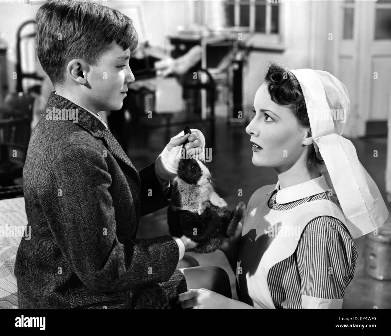 INGLIS,CLARK, WHITE CORRIDORS, 1951 Stock Photo