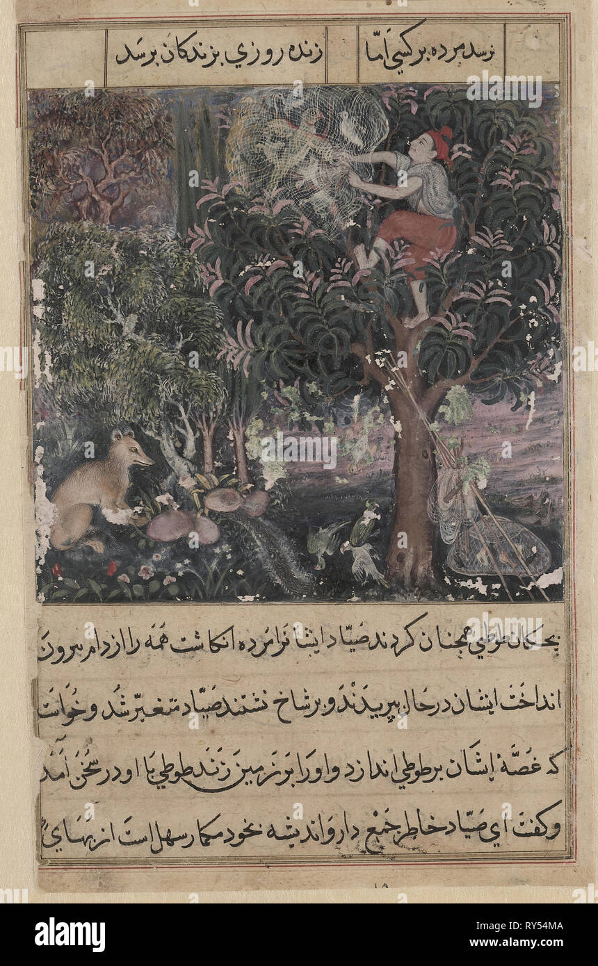 Page from Tales of a Parrot (Tuti-nama): Fifth night: The hunter throws away the baby parrots, who pretend to be dead, and captures the mother, c. 1560. Attributed to Basavana (Indian, active c. 1560–1600). Opaque watercolor, ink and gold on paper; page: 20 x 14.4 cm (7 7/8 x 5 11/16 in.); painting: 10.6 x 10.2 cm (4 3/16 x 4 in - Stock Image