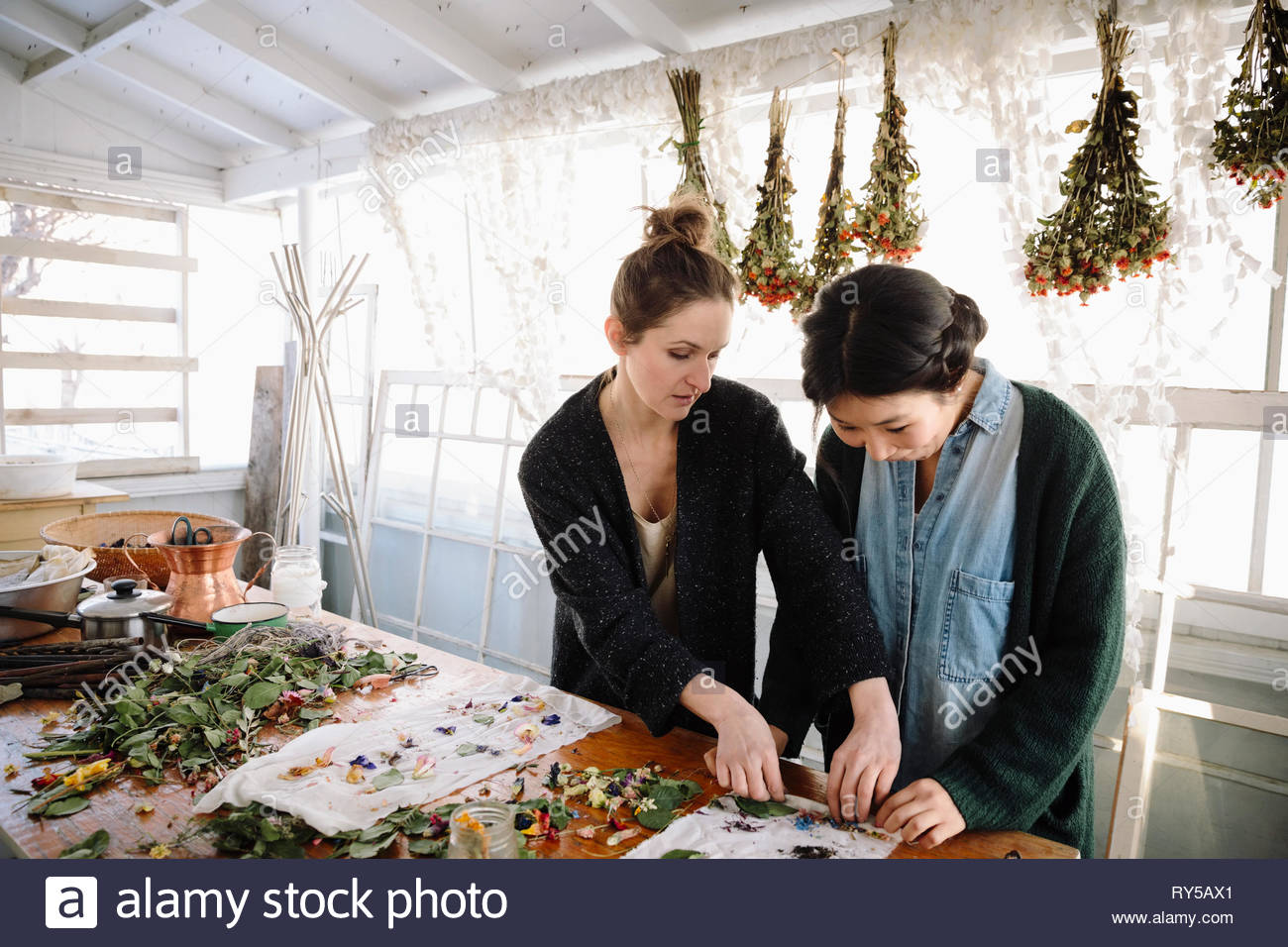 Female artists drying flowers for paper making - Stock Image