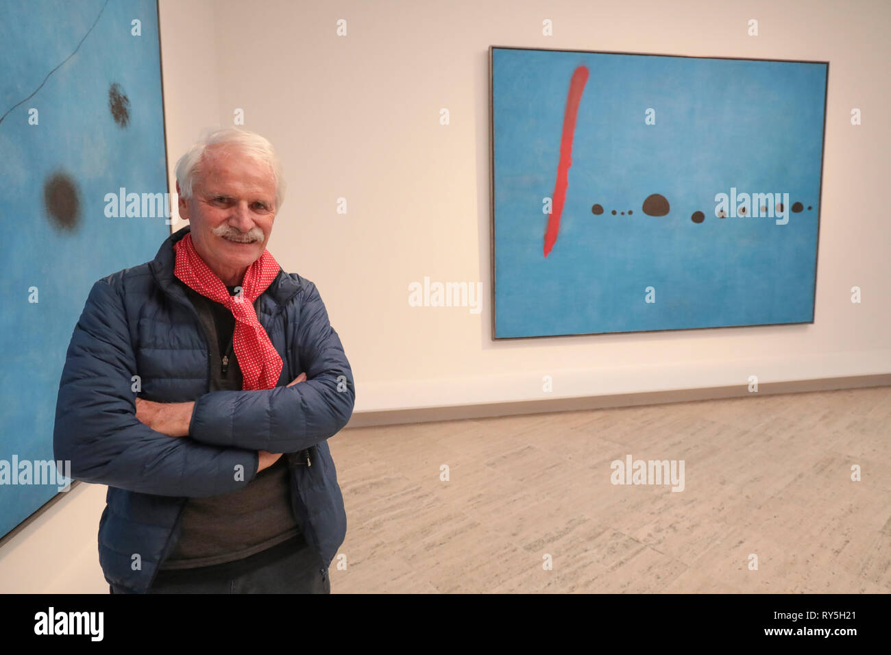 YANN ARTHUS-BERTRAND MIRO'S exhibition   GRAND PALAIS Museum PARIS - Stock Image