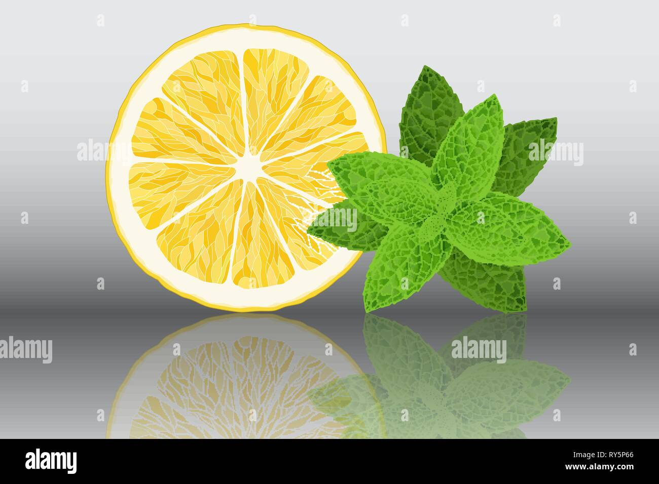 Lemon and mint reslistic vector illustration on grey background - Stock Vector