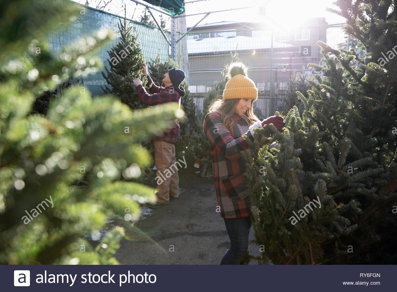 Woman shopping for christmas tree at christmas market - Stock Image
