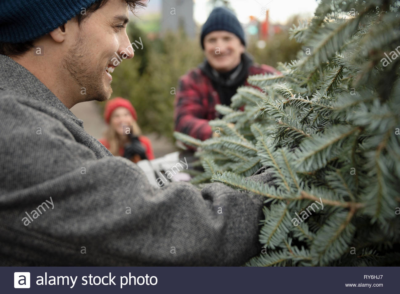 Happy man fastening christmas tree on top of car at christmas market - Stock Image