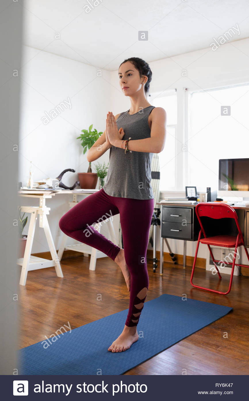Serene young Latinx woman practicing yoga tree pose in apartment - Stock Image