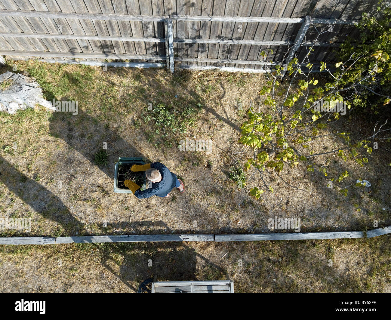 Australian pensioner gardening at home aerial view from above. Aerial photography in Victoria, Australia. - Stock Image