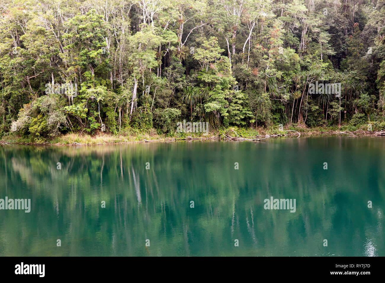 View of Lake Eacham, Atherton Table Lands,  Far North Queensland, Australia - Stock Image