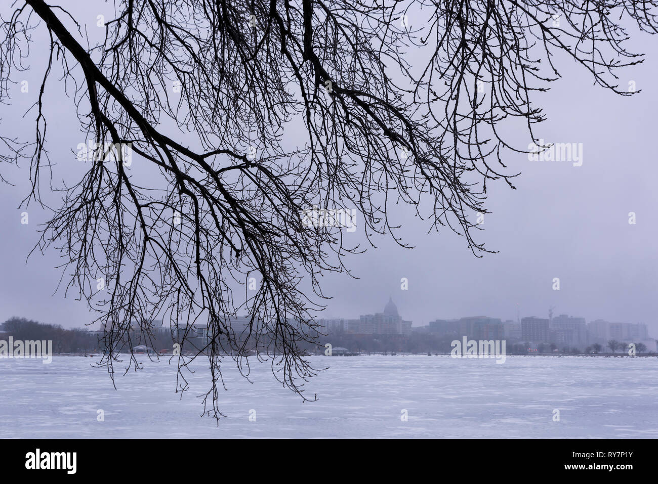 Winter weather in Madison, Wisconsin Stock Photo: 240501463