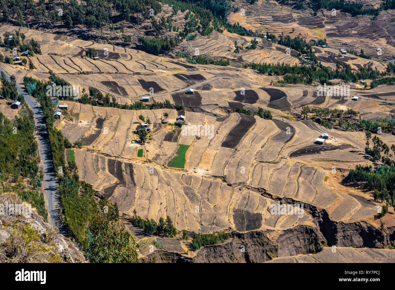 ETHIOPIA, terraced fields with single farm houses seen from the road between Mekelle and Lalibela, - Stock Image