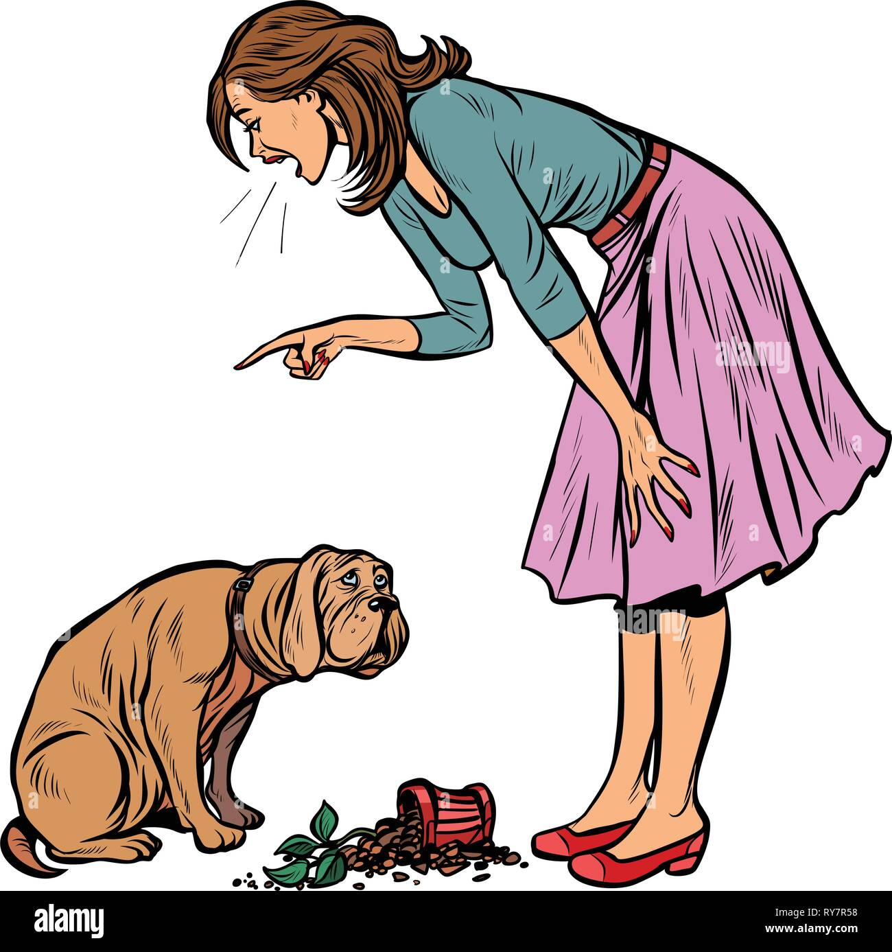 Woman scolds guilty dog. Broken pot with flower isolate on white background - Stock Image