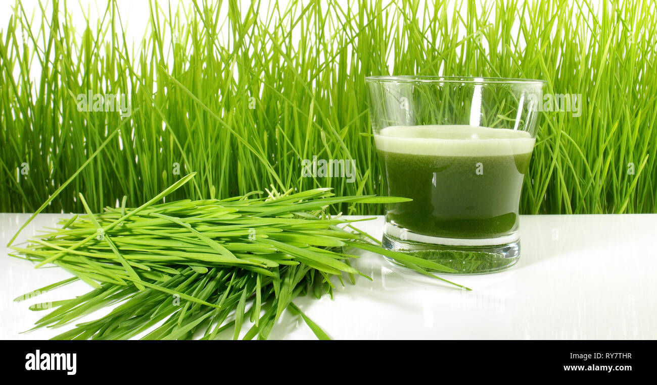 Wheatgrass Juice - Healthy Nutrition - Stock Image