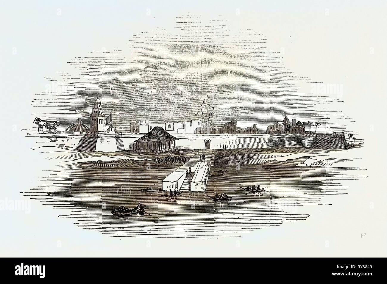 Campeachy - Stock Image