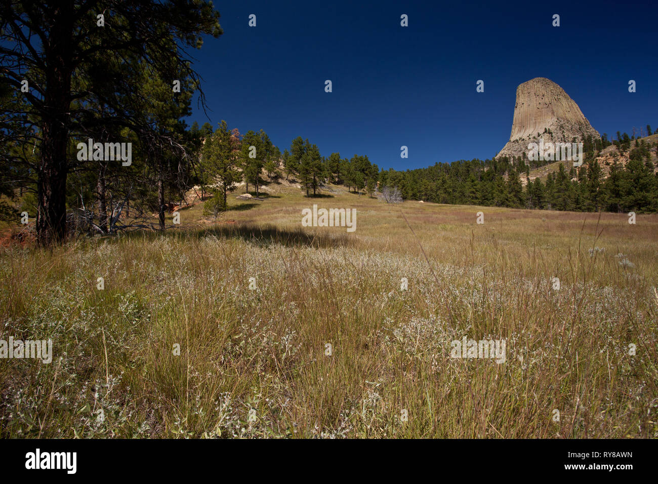Devil's Tower National Monument, Crook County, Wyoming, USA - Stock Image