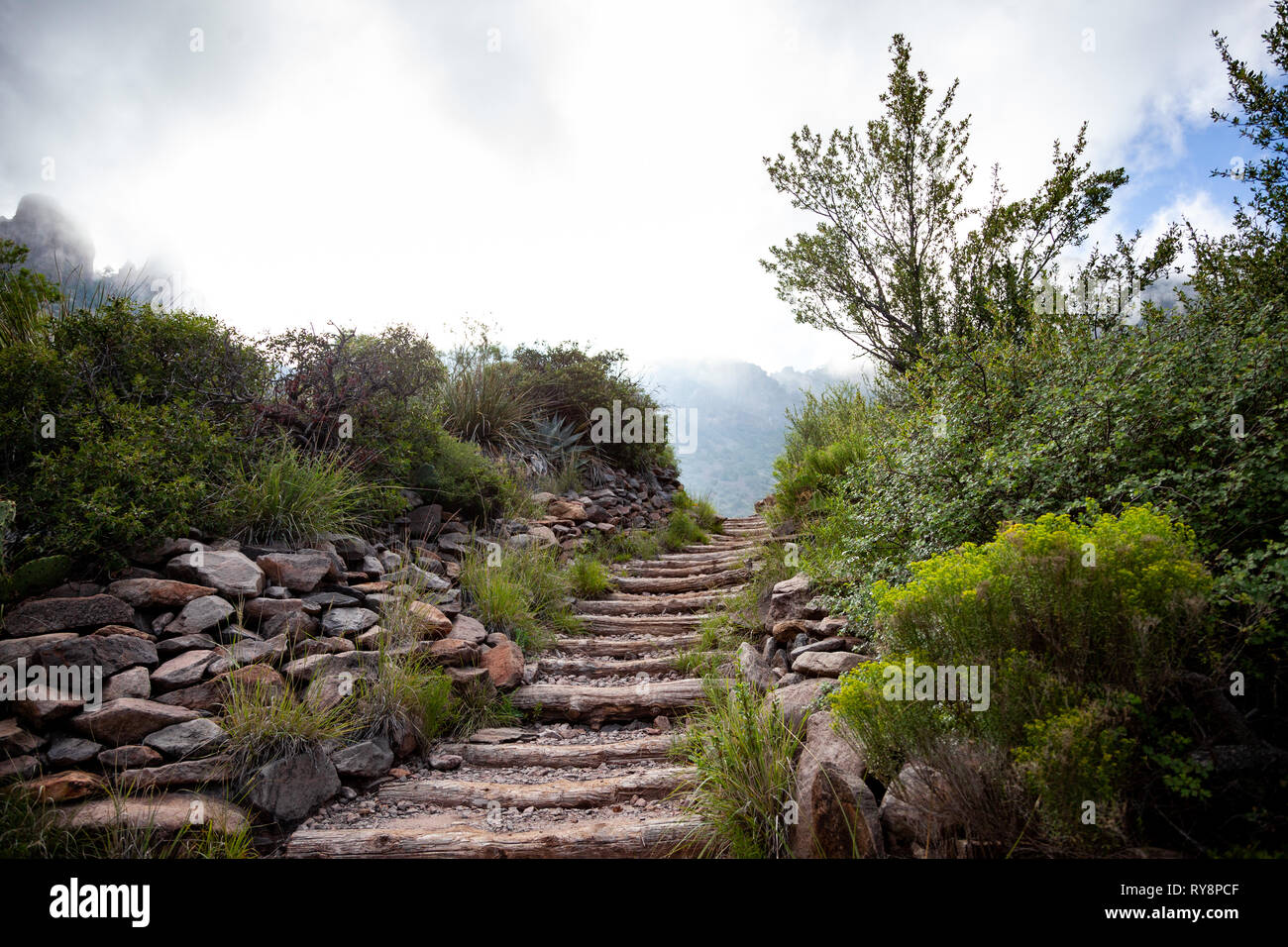 Mountain paths up the Chisos Mountains of Big Bend National Park. - Stock Image