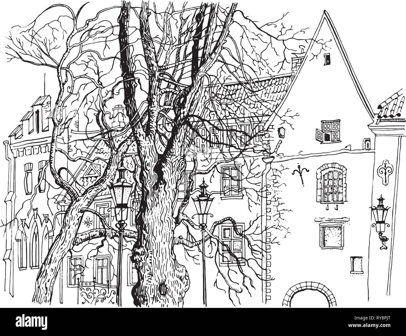 Tallinn Old Town view. Olevimagi street. Hand drawn graphic style ink pen illustration. Historical architecture, medieval houses, trees. Baltic states - Stock Vector