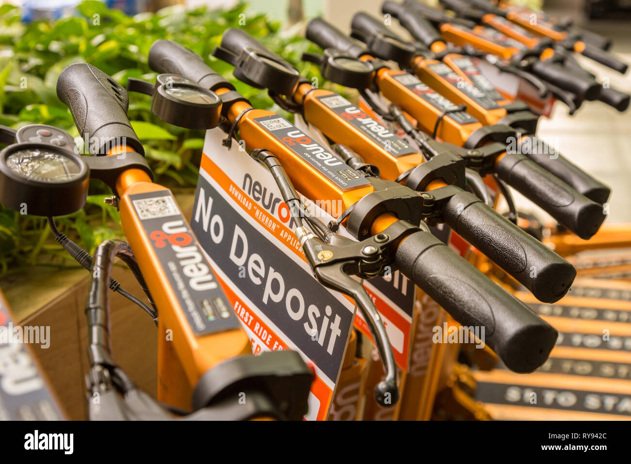 Neuron Mobility scooters lined up, Singapore - Stock Image