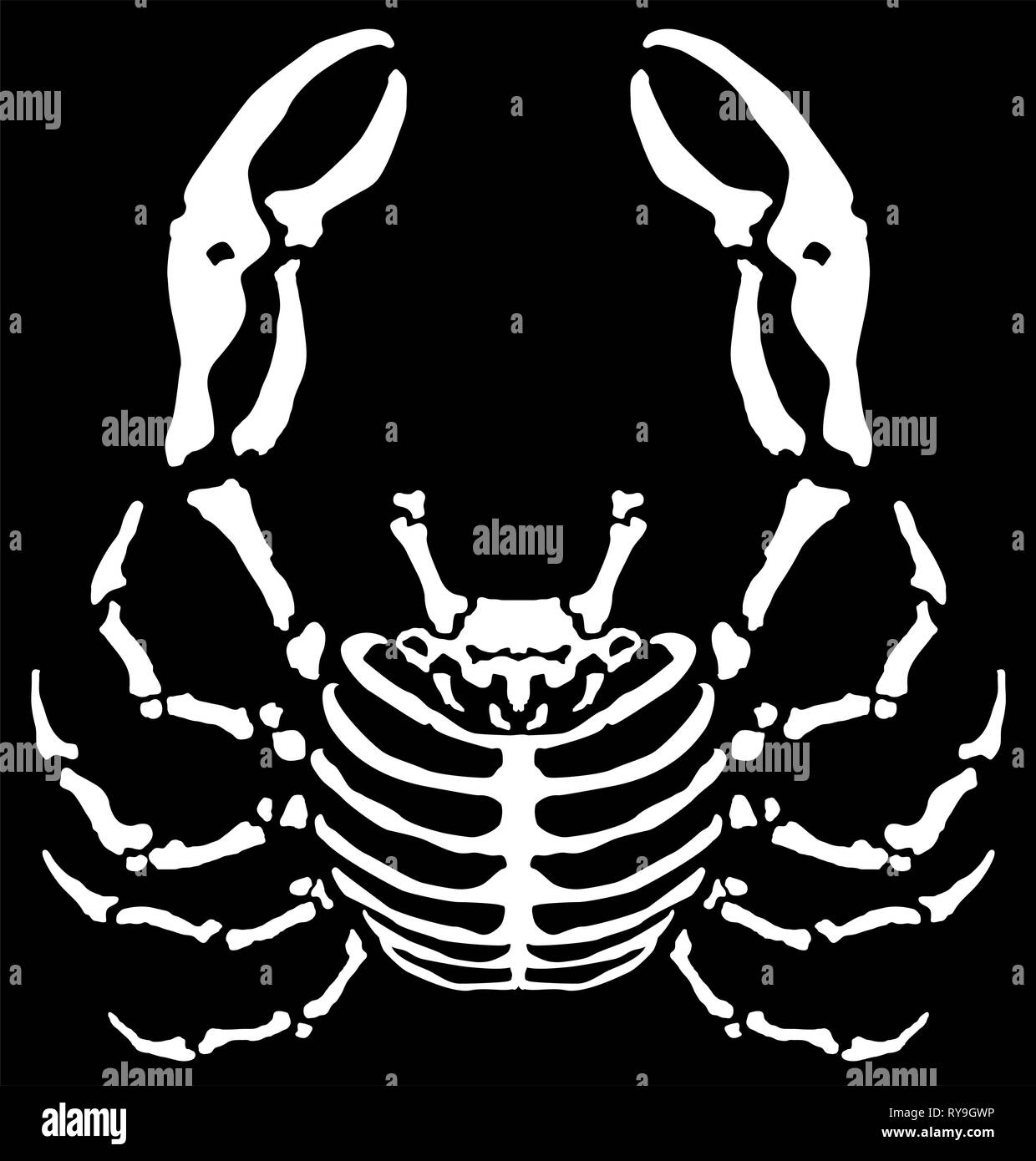 Crab animal skeleton cartoon surreal, vector illustration, horizontal, black background, isolated - Stock Vector