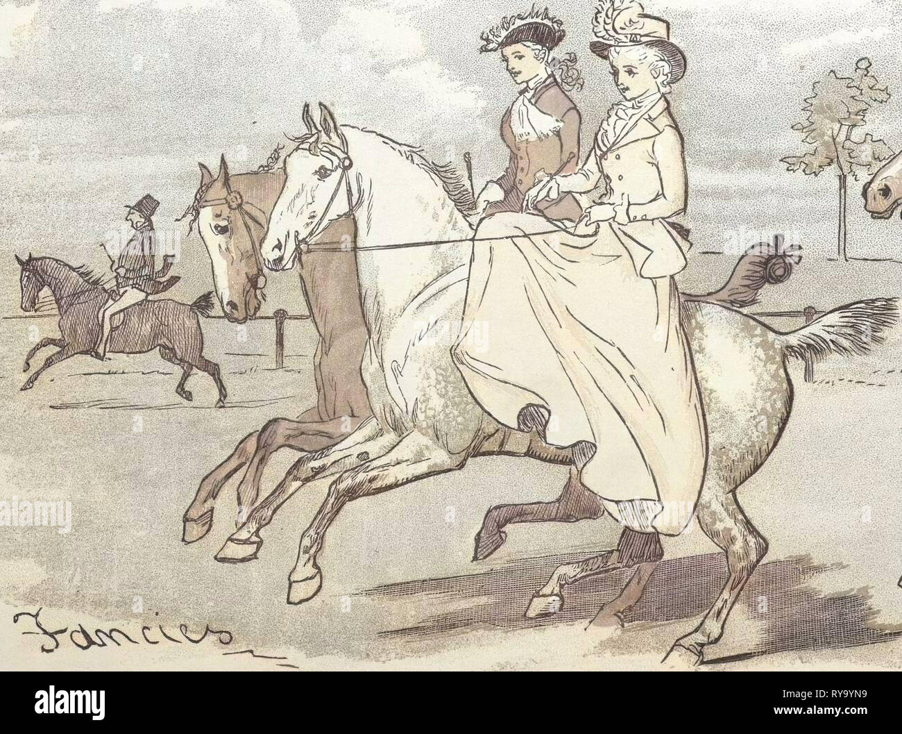 Two Ladies Out Horseriding - Stock Image