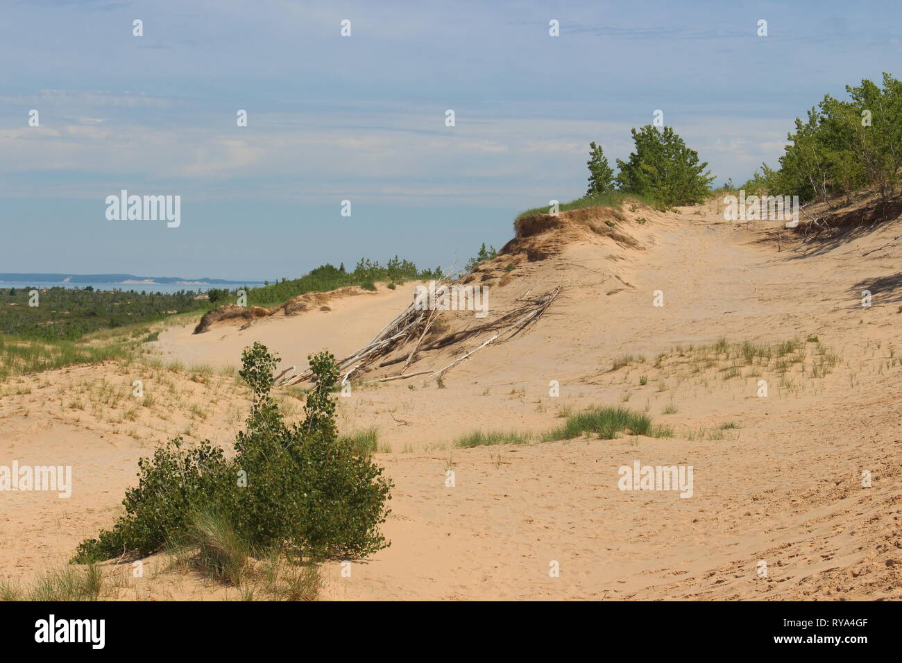 Grass growing out of giant piles of sand on top of a giant lake is something I never thought I'd see. - Stock Image