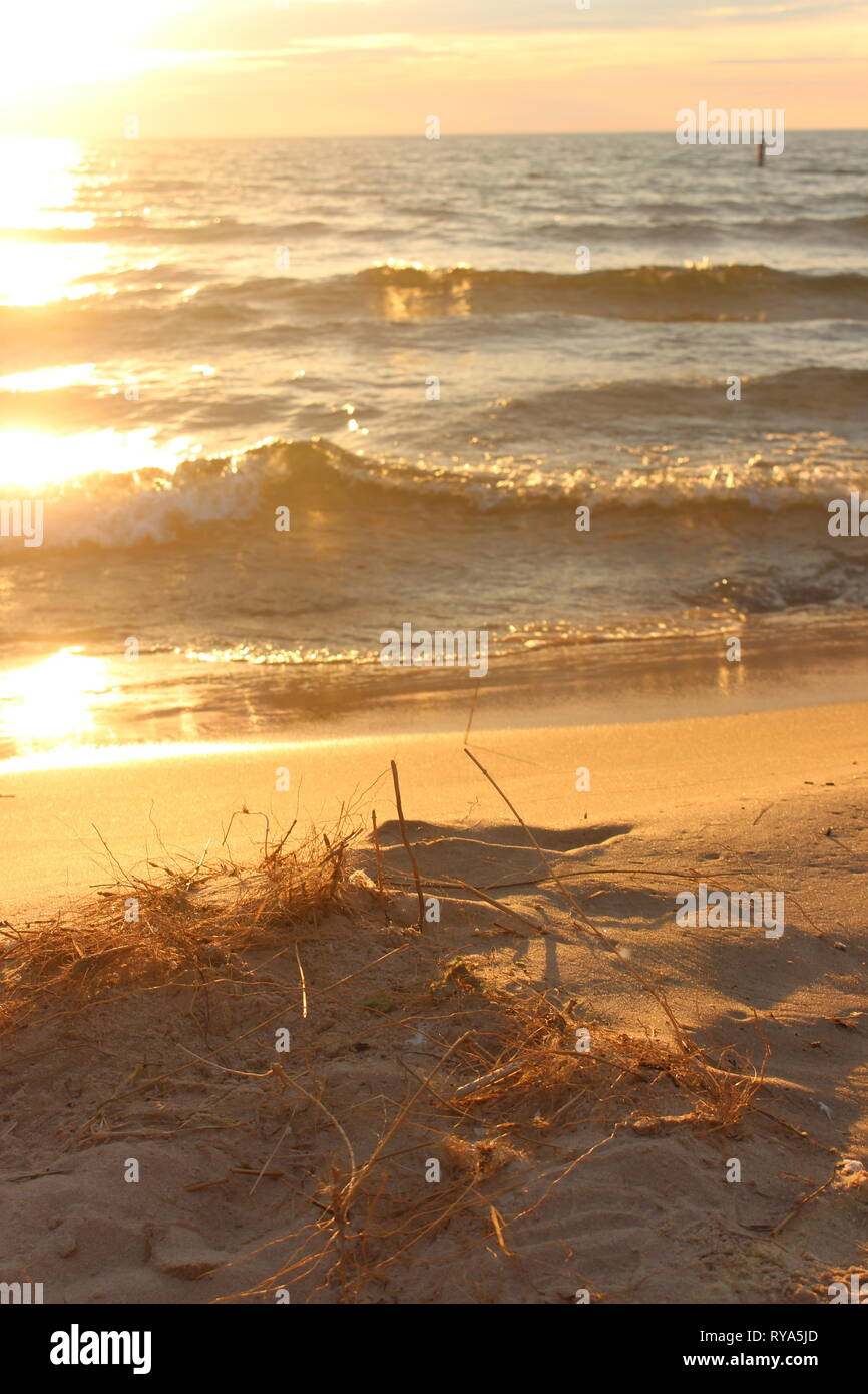Sit a while and enjoy my view. - Stock Image