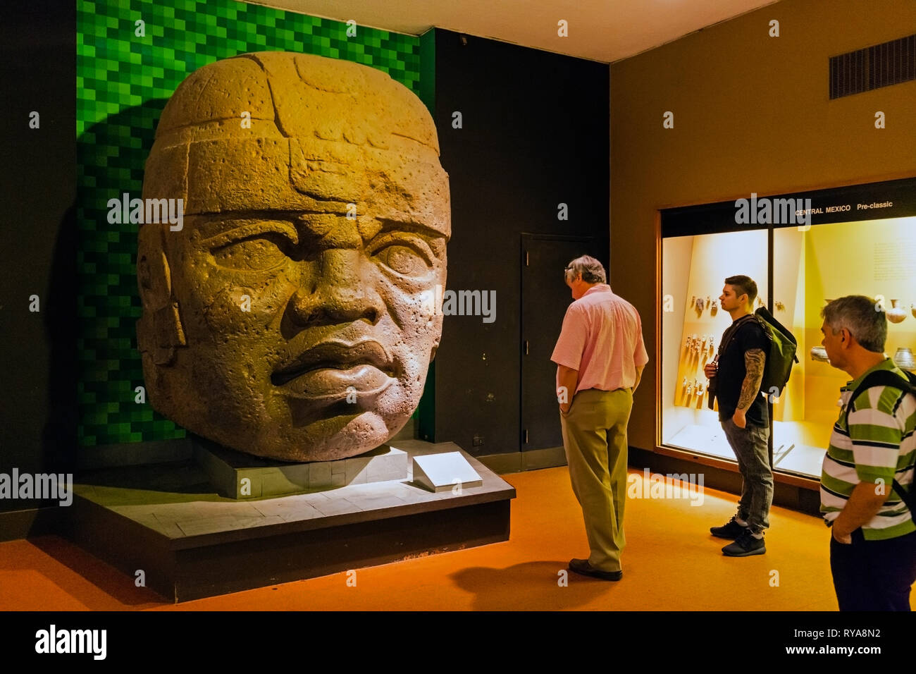 Colossal Olmec Head discovered in San Lorenzo, Mexico.   This is a copy of the original which weighs around 20 tons.  American Museum of Natural Histo - Stock Image