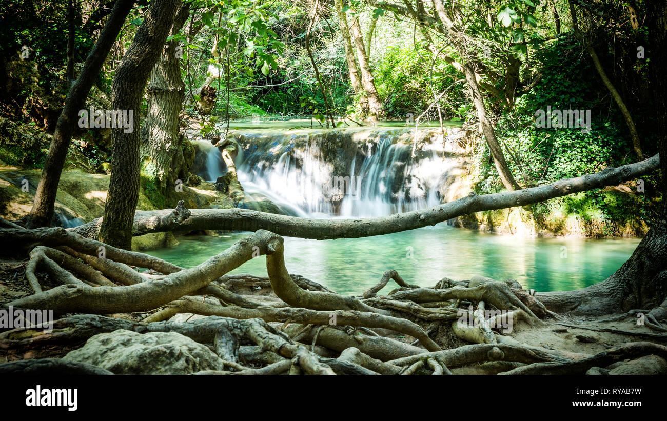Unter dem Wasserfall sind mehrere Wasserbecken mit kleinen Ueberlaeufen gefuellt, darum befinden sich zahlreiche Baeume mit ihrem Wurzelwerk in Cascad - Stock Image