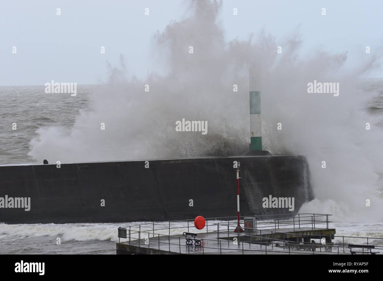 Aberystwyth Ceredigion Wales UK, Wednesday 13 March 2019. UK Weather: Storm Gareth, the latest named storm of the season, hits the seafront in Aberystwyth. The gale force winds of Storm Gareth are expected to bring damaging 70mph gusts to exposed Irish Sea coasts today. photo Credit: Keith Morris/Alamy Live News - Stock Image
