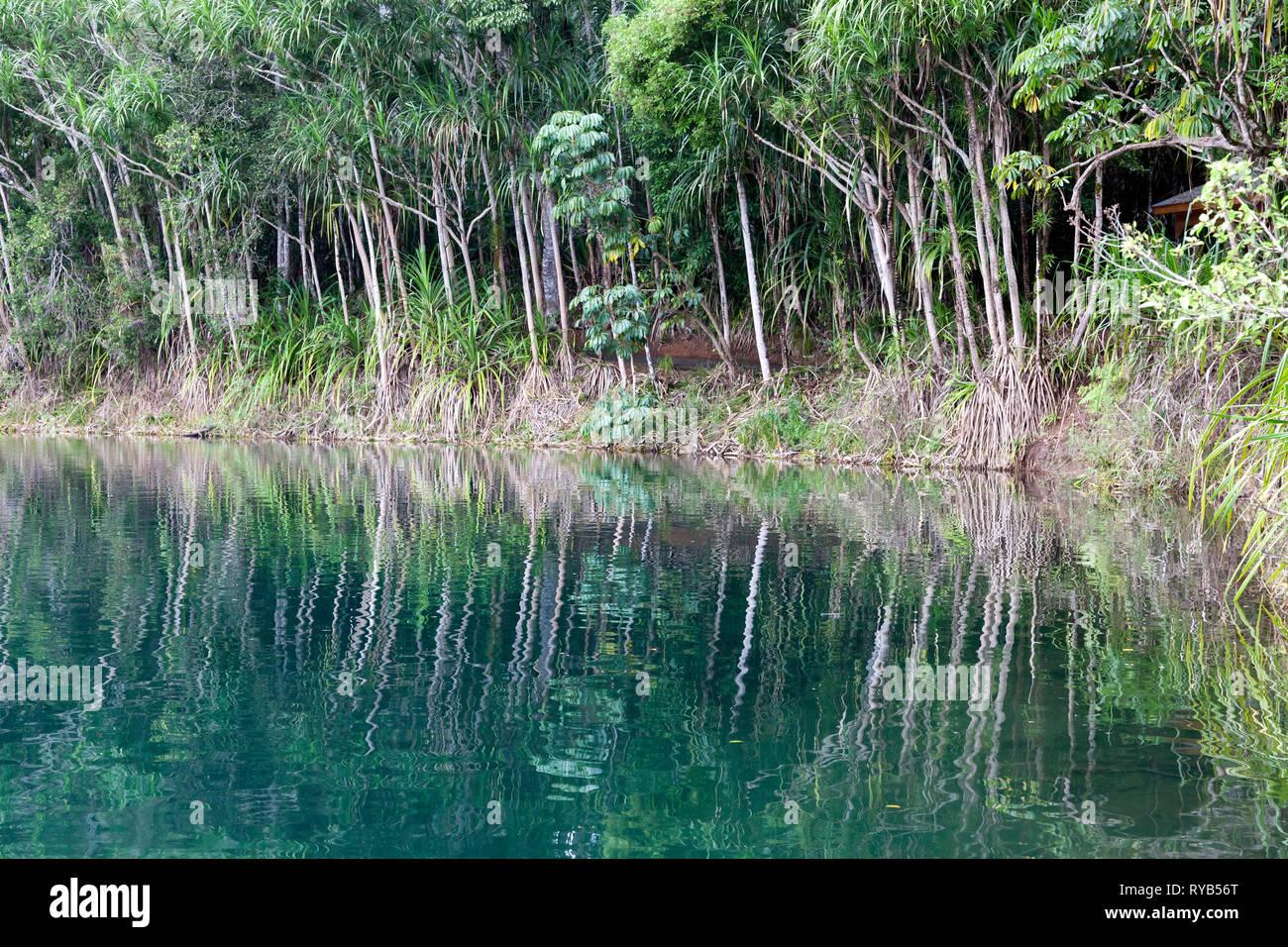 View of Lake Eacham, a popular lake of volcanic origin on the Atherton Tableland of Queensland, Australia, - Stock Image