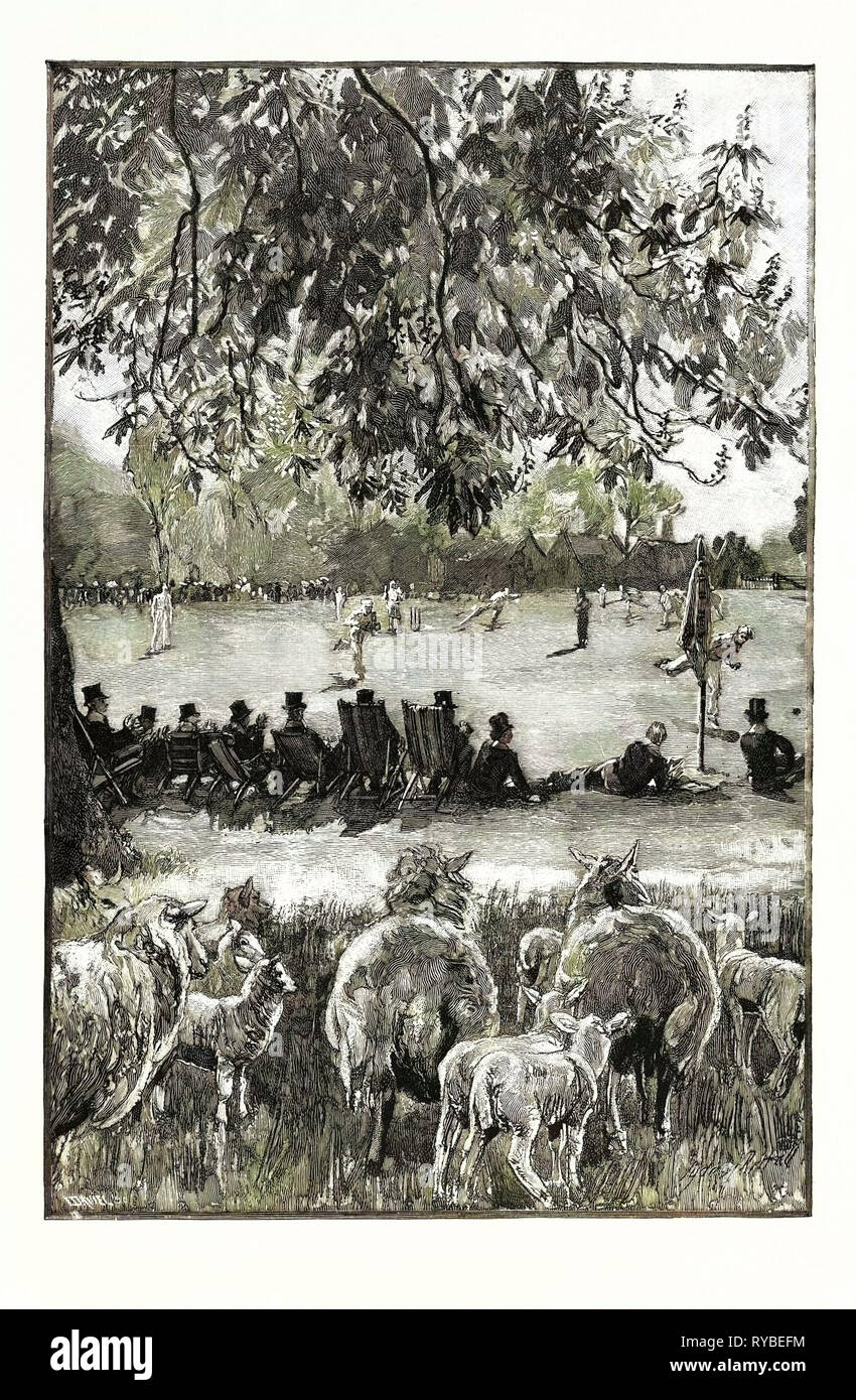 A Boy's Life at Eton: Oh! Well Hit! a Cricket Match in the Playing Fields UK Stock Photo