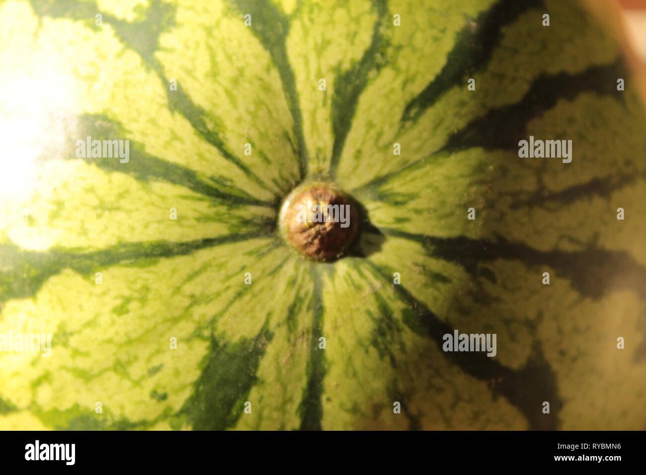 Textura de una sandia, foto tomada en mi jardín en Tonala, Jalisco, México utilizando un lente 18-55 mm canon y haciendo un zoom a la cascara - Stock Image
