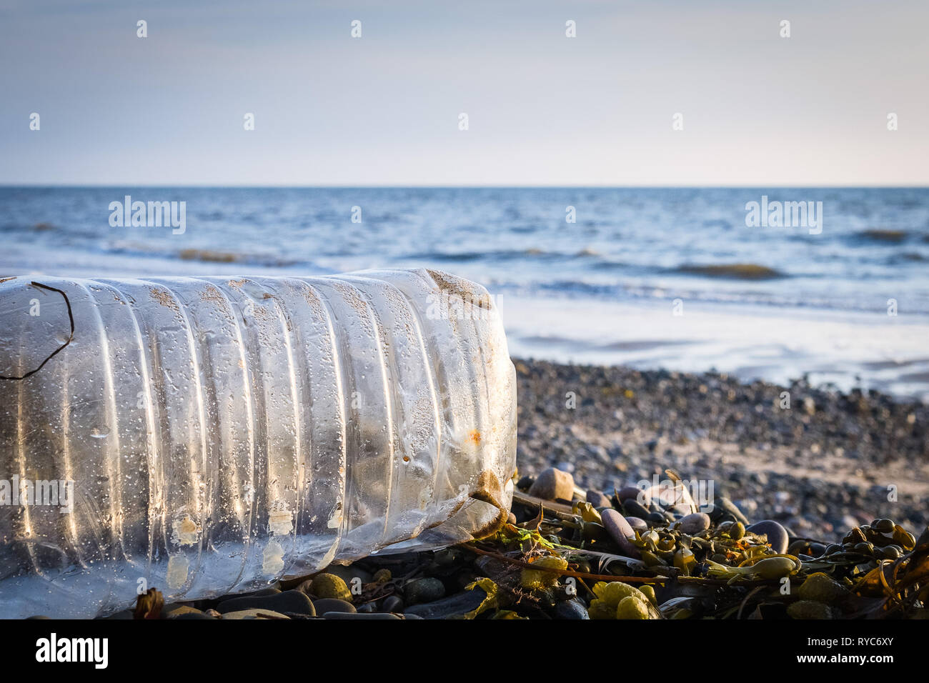 A washed-up plastic bottle and seaweed on a shingle beach with the ocean in the background and a low sun shining - Stock Image