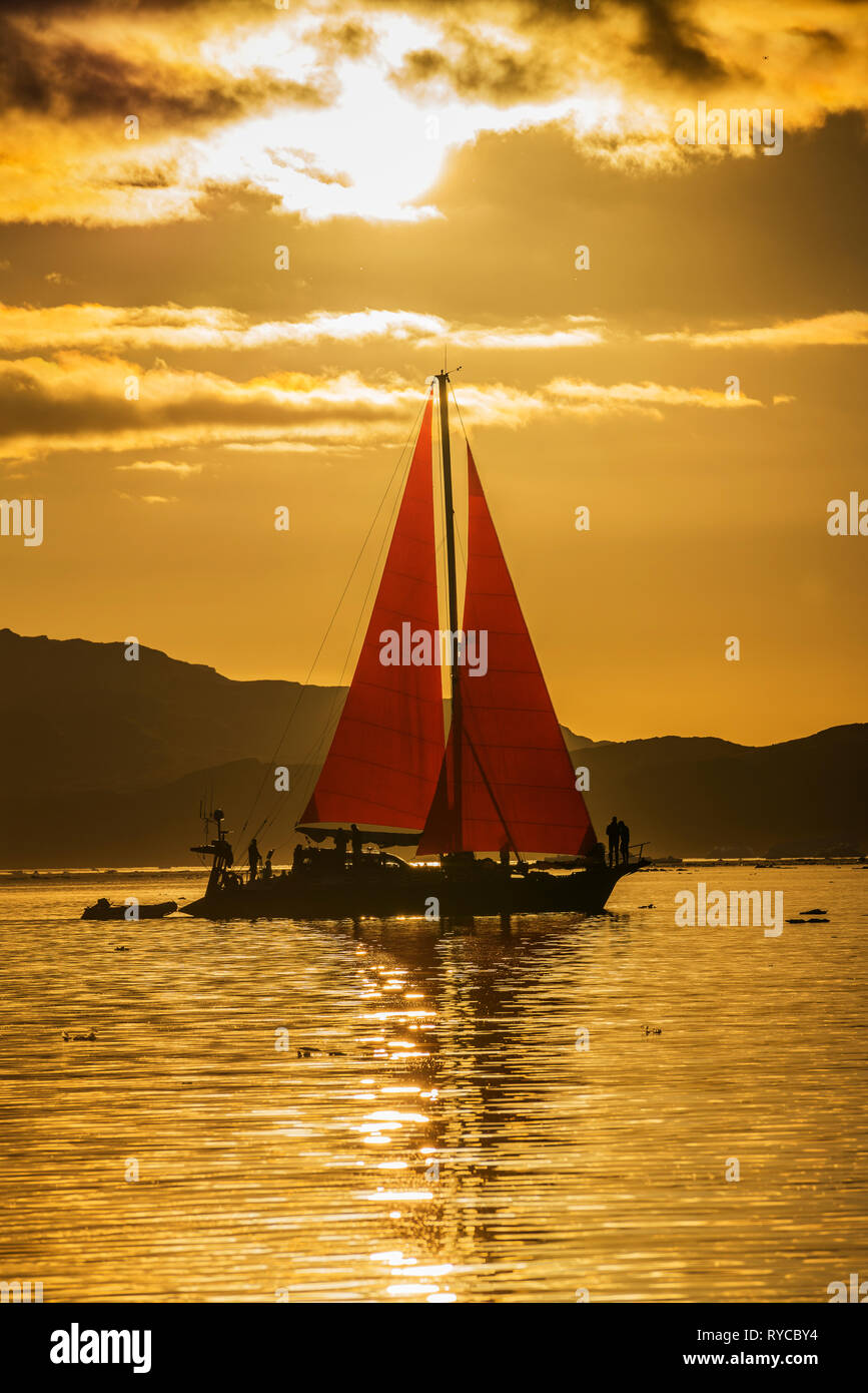 Sailboat, Icefjord, South Greenland - Stock Image