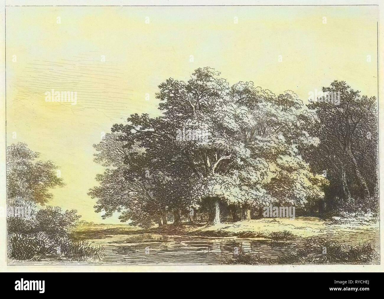 Trees on the water, Remigius Adrianus Haanen, c. 1827 - 1888 - Stock Image