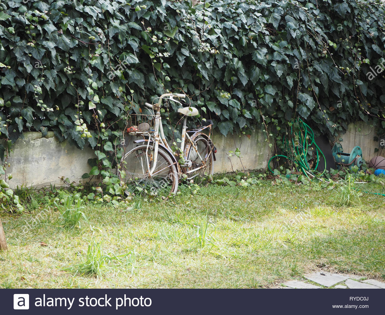 Old rusty abandoned bicycle in a backyard - Stock Image