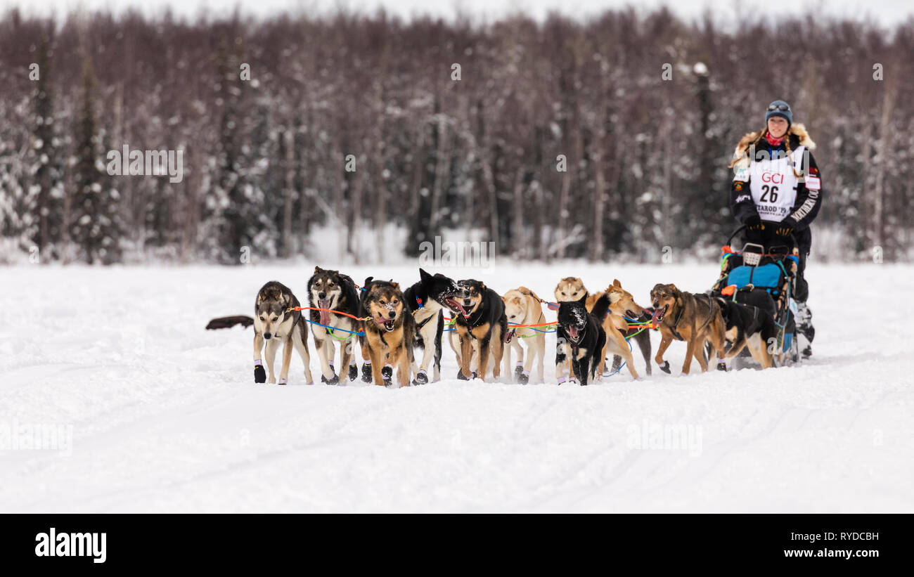 Musher Kristy Berington after the restart in Willow of the 47th Iditarod Trail Sled Dog Race in Southcentral Alaska. - Stock Image