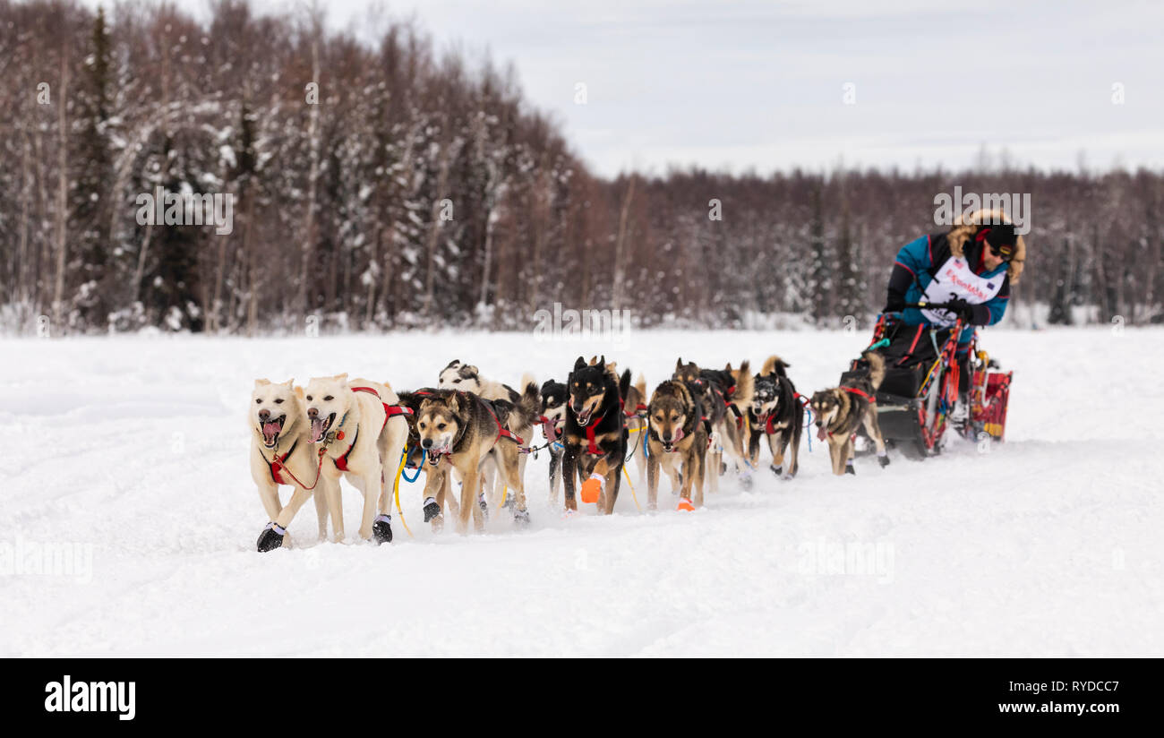 Musher Mitch Seavey after the restart in Willow of the 47th Iditarod Trail Sled Dog Race in Southcentral Alaska. - Stock Image