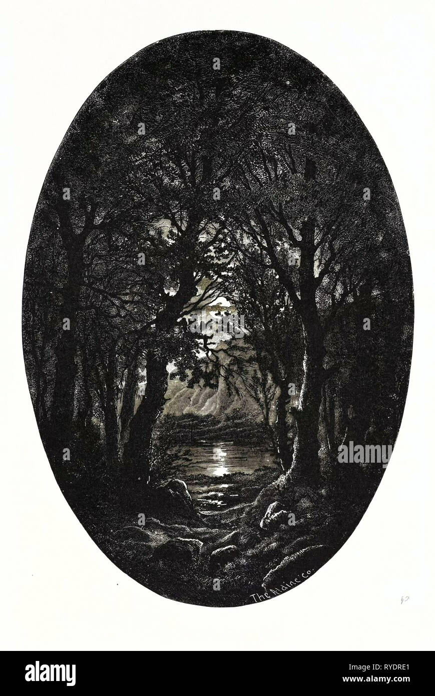 Under the Silver Full-Moonlight Shimmereth White the Lake Seen Through the Natural Arches that the Crossing Branches Make. Weird is the Quiet Beauty Enwrapping the Scene Like a Spell Where Alike the Naiad and Dryad Should Be Happy and Proud to Dwell Stock Photo