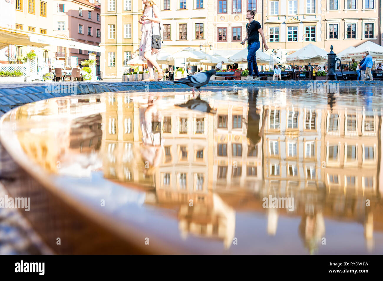 Warsaw, Poland - August 22, 2018: Historic cityscape with architecture buildings and mermaid water fountain in old town market square with birds refle - Stock Image