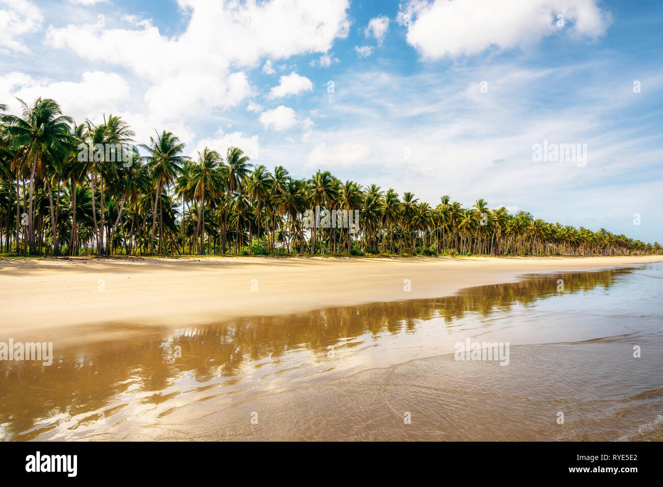 Secluded Long Beach at San Vincente with reflection in sea, Palawan, Philippines - Stock Image