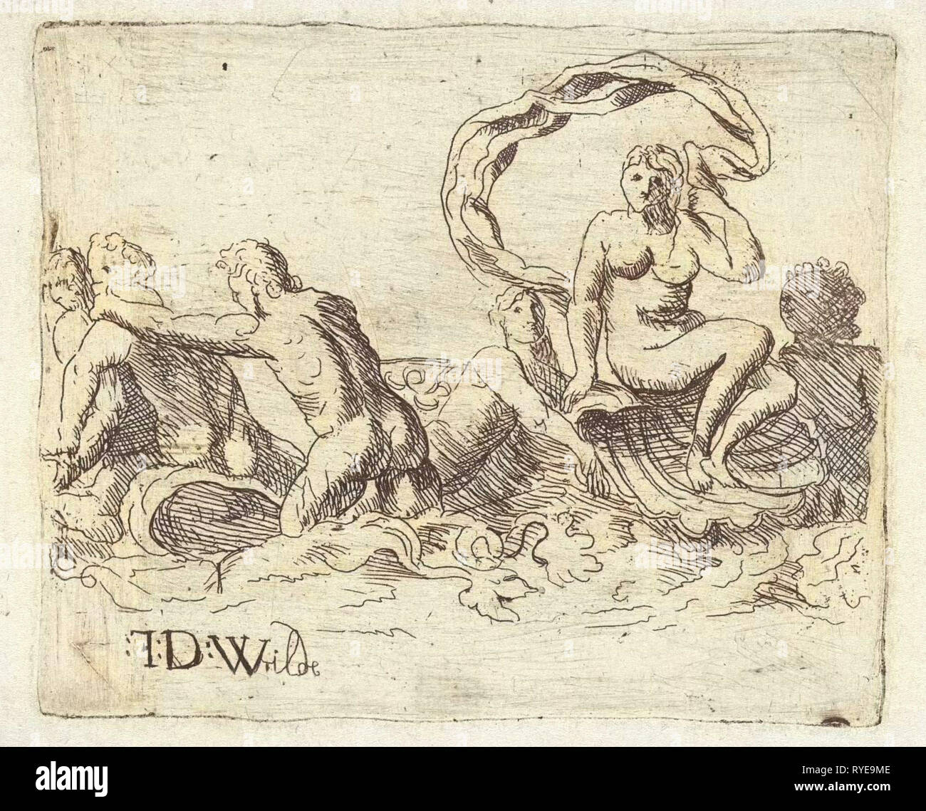sea gods and nymphs in the surf, Franz de Wilde - Stock Image