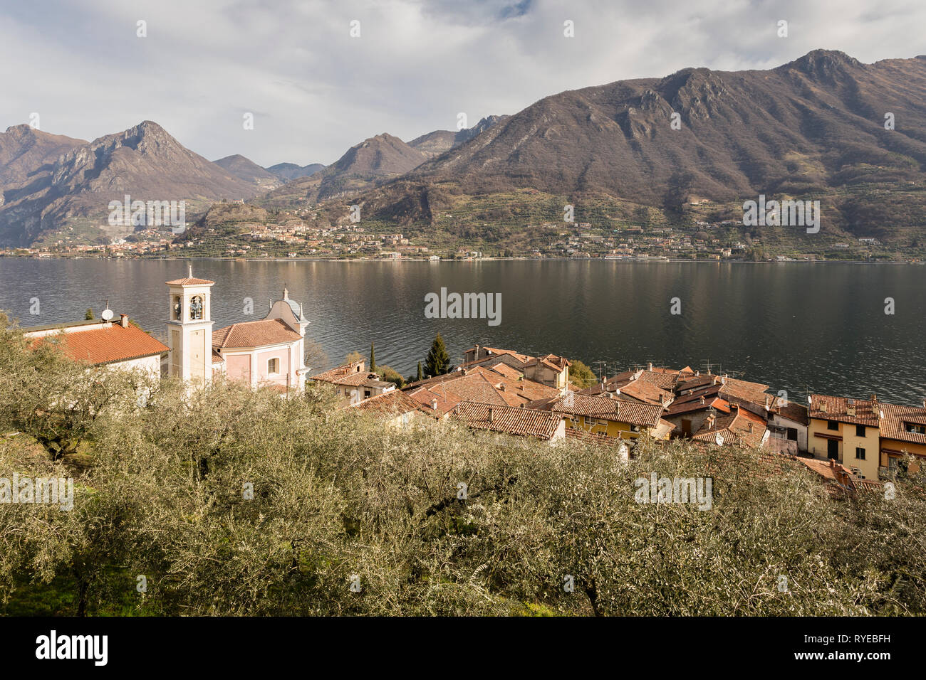 Olive grove and Carzano village of Monte Isola, Lake Iseo, Lombardy, Italy - Stock Image