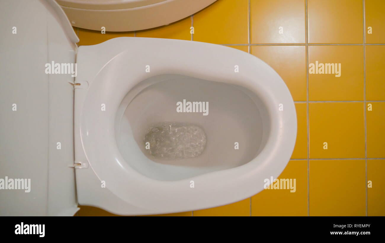 Prime Flushing Of Water In The Toilet Bowl From The Toilet Room Inzonedesignstudio Interior Chair Design Inzonedesignstudiocom