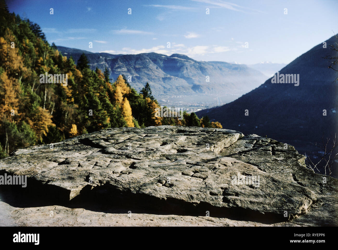prehistory, architecture, South Tyrol, prehistorical cult stone, cup-marked stone, near Plars, Adige Valley, Additional-Rights-Clearance-Info-Not-Available - Stock Image