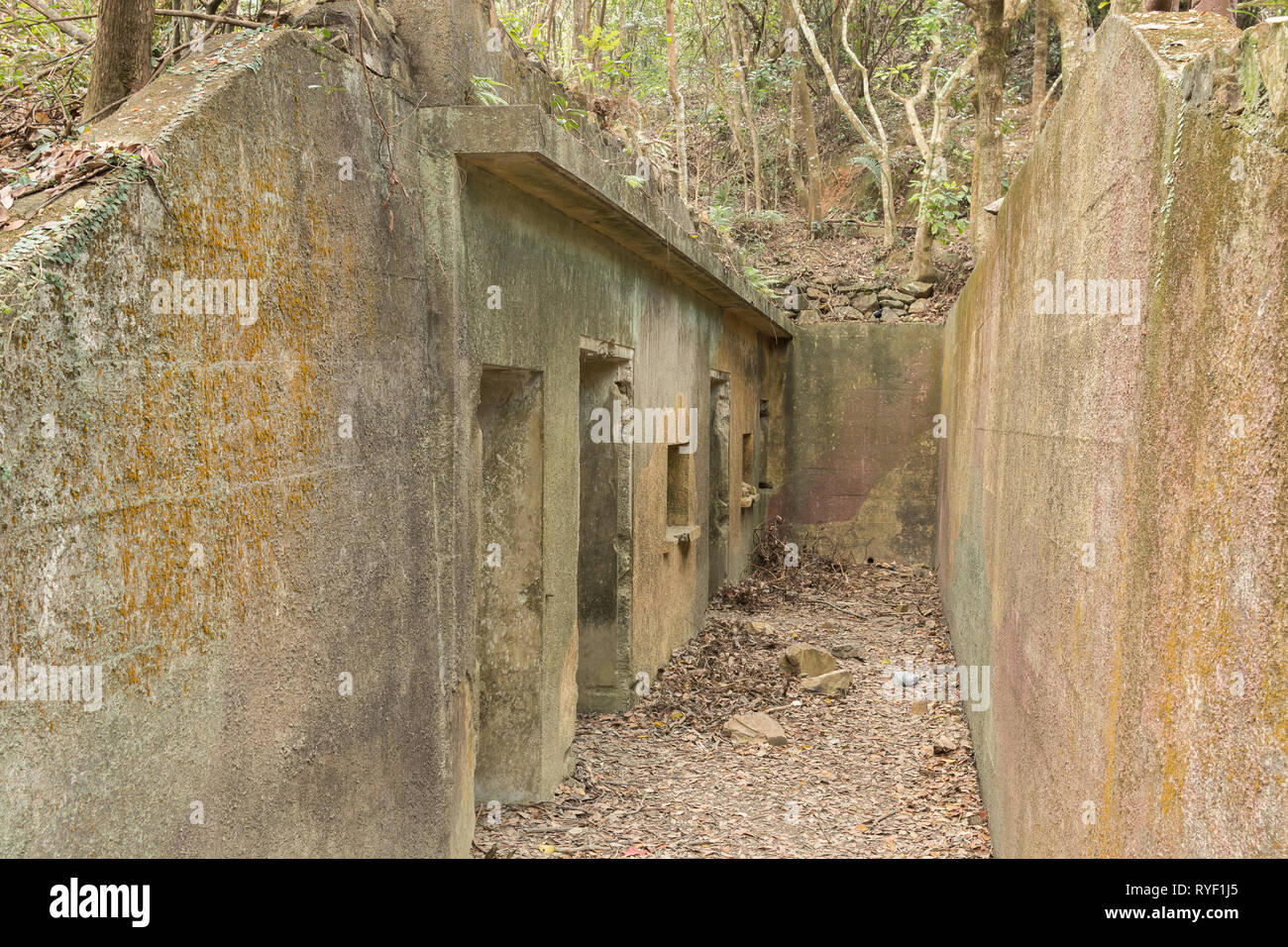 Pinewood Battery, an overgrown and abandoned British military position near Victoria Peak, Hong Kong Island. - Stock Image