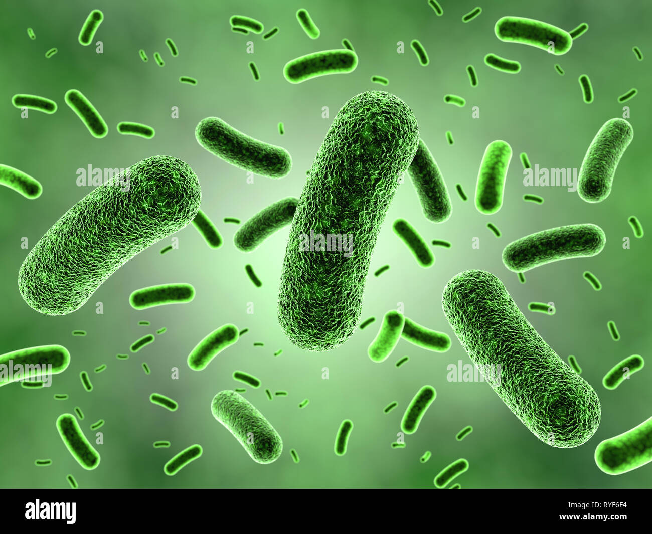 3D illustration of bacteria colony - Stock Image